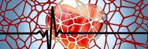 A regeneração de células do músculo cardíaco pode ajudar muitos pacientes que sofrem de insuficiência cardíaca