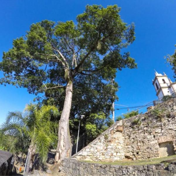 Parque Municipal Outeiro da Glória receberá uma série de atividades culturais e sustentáveis durante a folia (Foto: Divulgação)